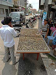 River Shells for Sale in Stung Treng by Asienreisender