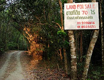 'Land for Sale in Khao Sok' by Asienreisender