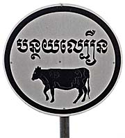 'Traffic Sign with Cow' by Asienreisender