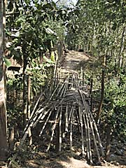 A Bamboo Bridge by Asienreisender