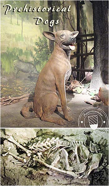 'Prehistorical Dogs in Southeast Asia' by Asienreisender