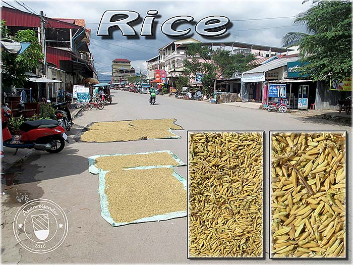 'Rice Grains, Layed out in the Sun on an Open Road' by Asienreisender
