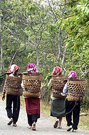'Tribal Women in the Forests around Muang Sing | Laos' by Asienreisender