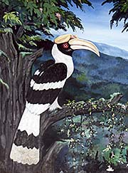'Painting of a Great Hornbill' by Asienreisender